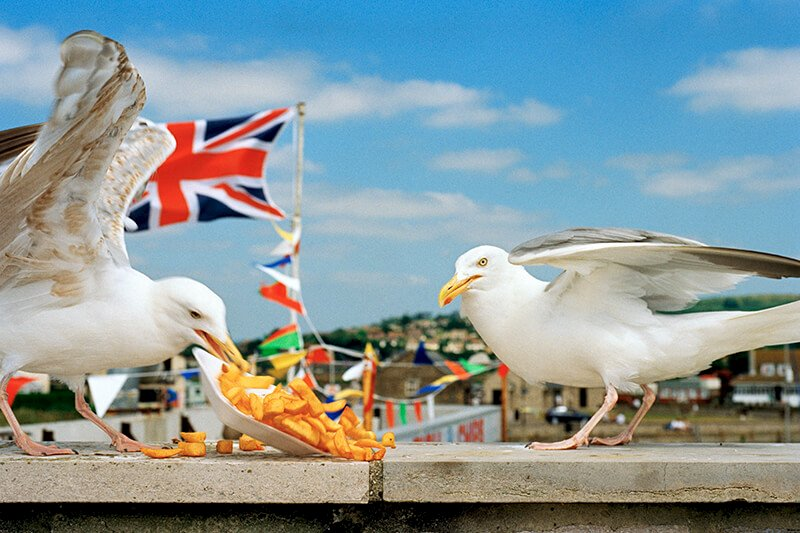Martin Parr, From 'West Bay'. Dorset. England. GB. 1996. © Martin Parr/Magnum Photos und Kunstfoyer