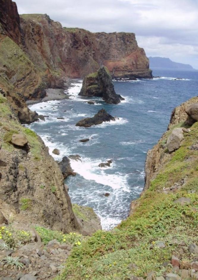 Madeira - Blumen, Lava und Levadas