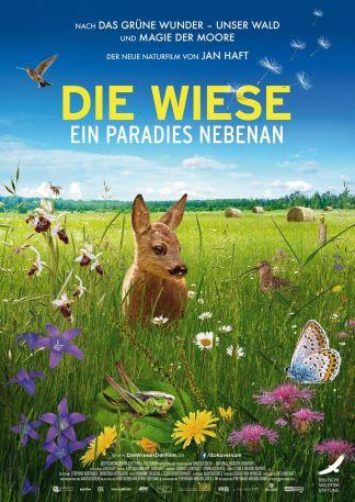 Die Wiese - Ein Paradies nebenan