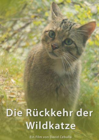 Die Rückkehr der Wildkatze