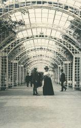 Dresden, Rudolf Bruner-Dvořák, 1909, Sammlung Scheufler
