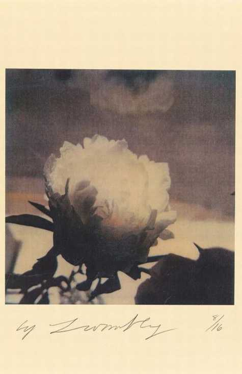 Cy Twombly  Peonies (Bassano in Teverina), 1980  43,1 x 27,9 cm  © Cy Twombly Foundation