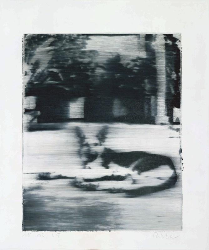 Gerhard Richter Hund, 1965  Siebdruck auf bemaltem Halbkarton, 64,9 x 49,9 cm  Courtesy Olbricht Collection © Gerhard Richter, 2017
