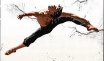 Ballet Revolucion Karten