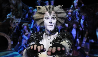 Cats Musical (Foto: Alessandro Pinna)